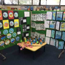 CLA_PRI_WA_Karrinyup Primary School_Year4-1