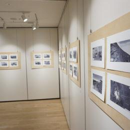 Gallery Fuji 01