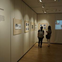 Gallery Fuji 05